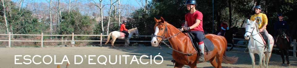 banner-escola-equitacio