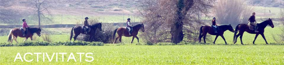 banner-excuriso-cavalls