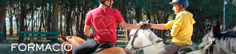 banner-formacio-escola-equitacio-grups-cavalls