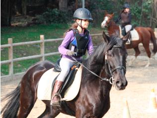 cavalls-escola-equitacio02
