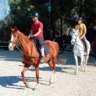 escola-equitacio