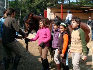 imatges-servei-cavall-equitacio