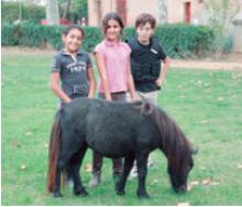 aniversaris-entre-cavalls